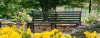 park bench in spring