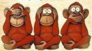 Monkeys see, hear, speak no evil, Bangra.com